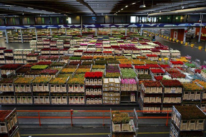 gestión de almacén