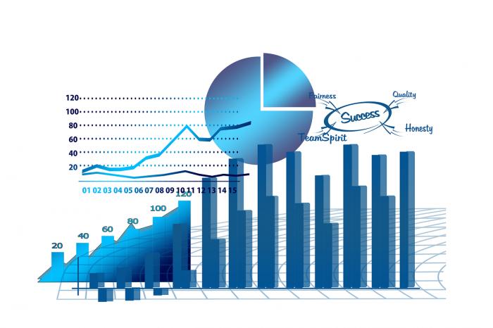 Tipos de programas ERP: ventajas y desventajas